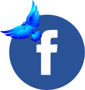 Facebook Cosign logo